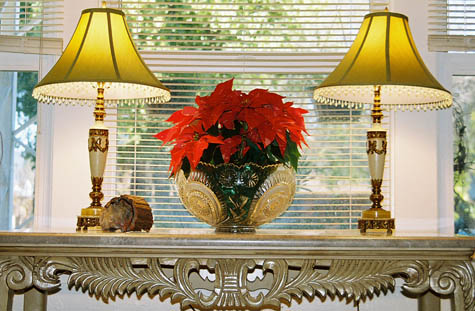 Pointsettia w/ lamps