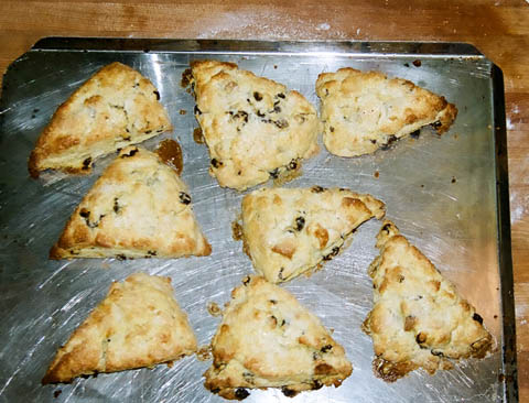 scones out of oven