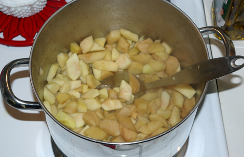 applepot